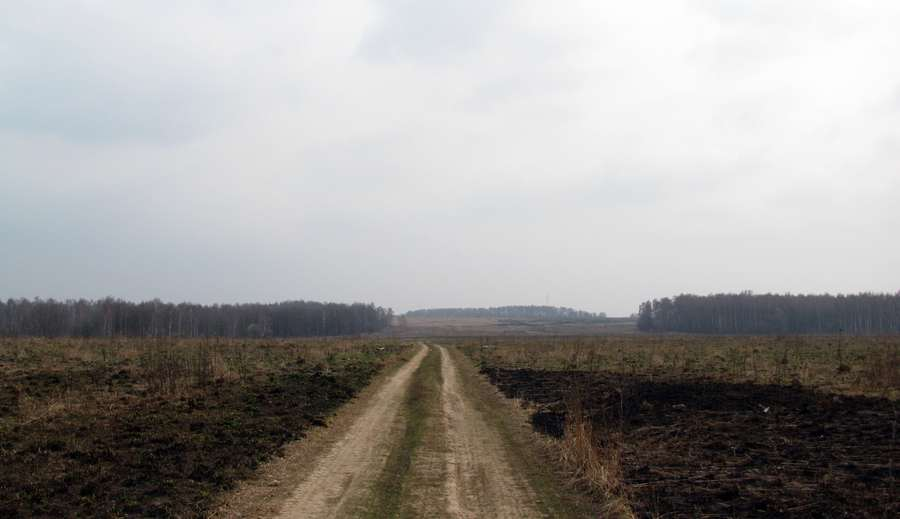 Дорога через поле к заветному оврагу